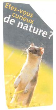 1-suricate